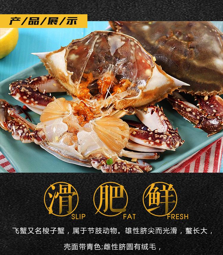 丹东飞蟹919_03.jpg