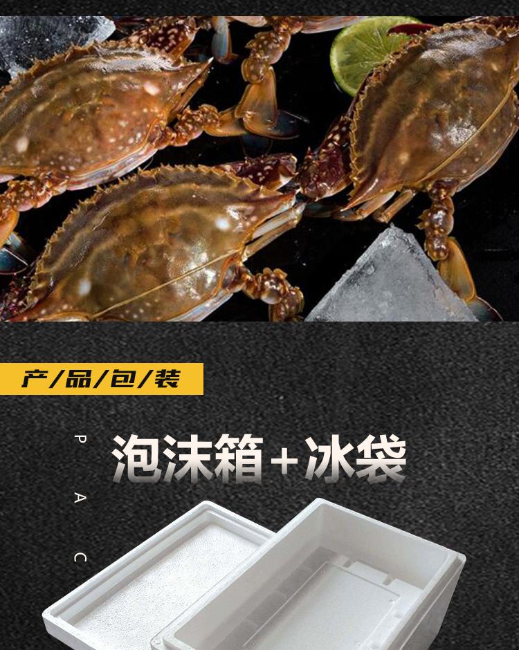 丹东飞蟹919_08.jpg