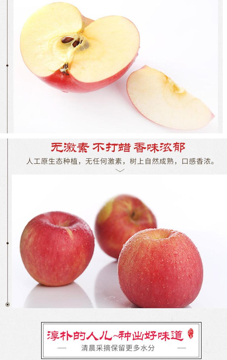 苹果_08.jpg