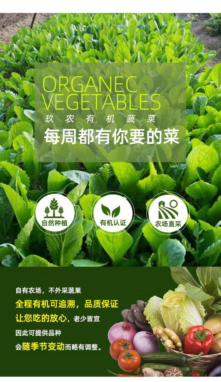 有机蔬菜详情_04.jpg