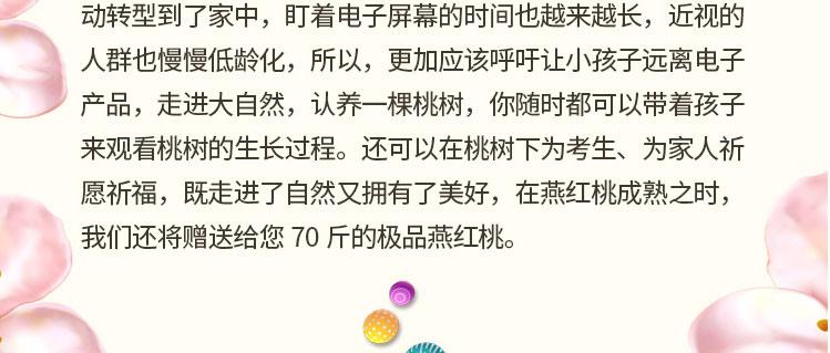 桃树家庭认养活动季_千集网_06.jpg
