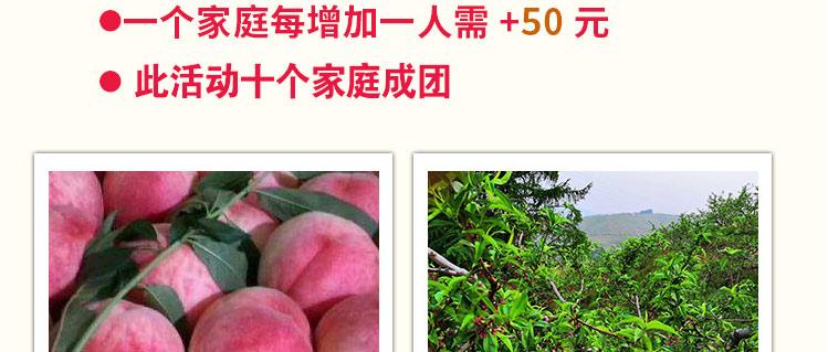 桃树家庭认养活动季_千集网_15.jpg