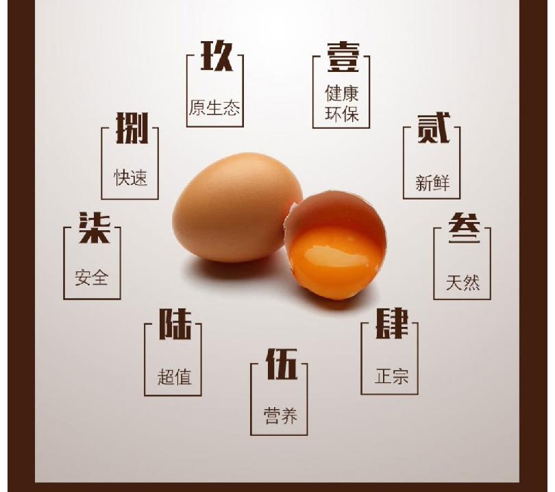 鸡蛋_07.jpg