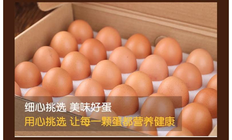 鸡蛋_10.jpg