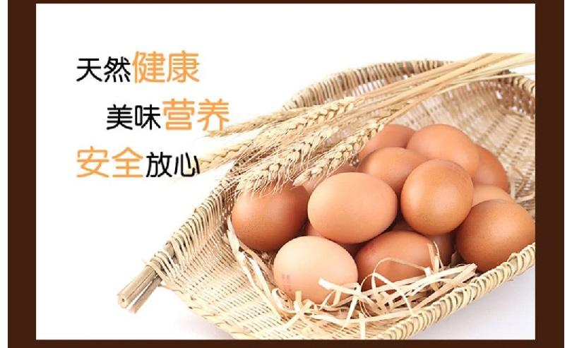 鸡蛋_11.jpg