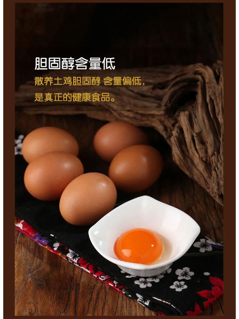 鸡蛋_15.jpg