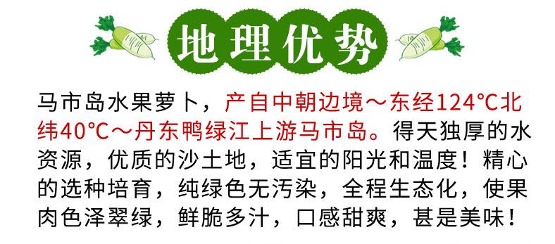 水果萝卜_05.jpg